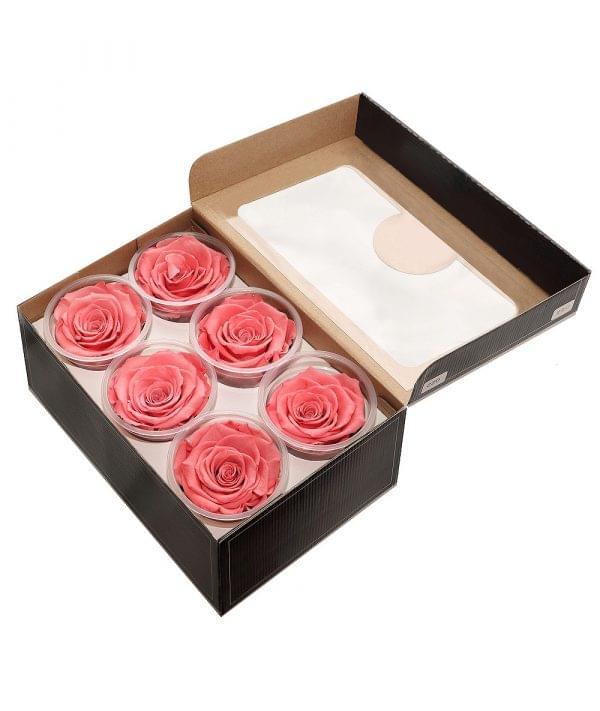 Forever roses buy by stem, one forever rose,